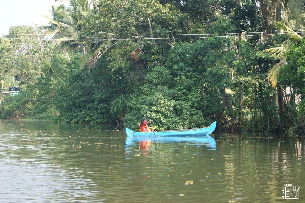Backwaters Koci Kerala India