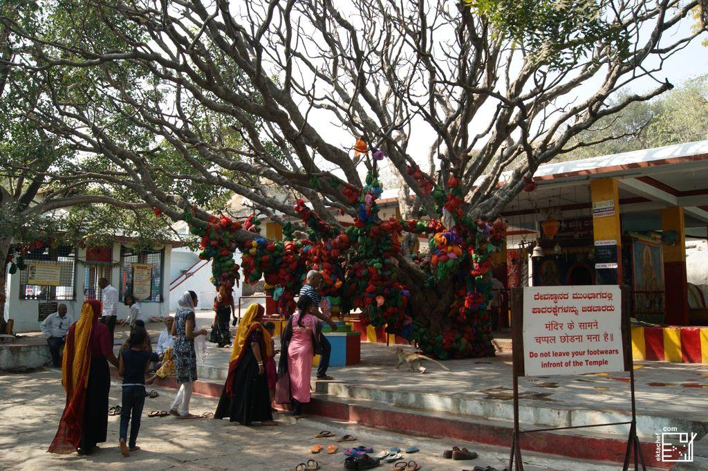 India Hampi Durga Temple