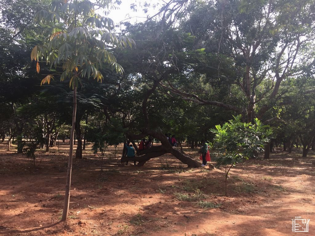 India Bengaluru Cubbon Park